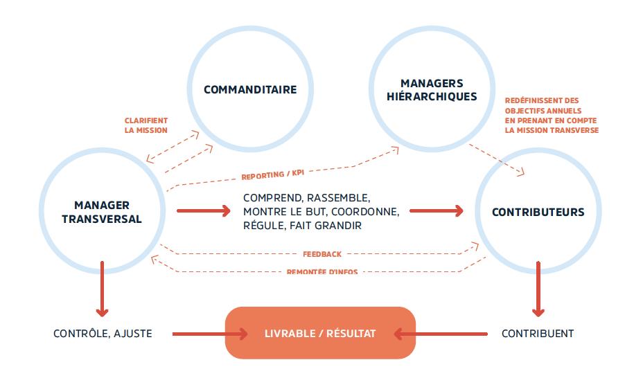 management transversal définition